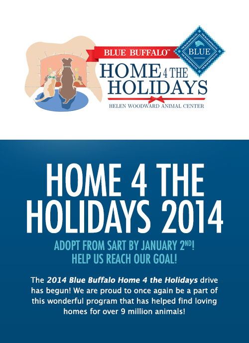 Home 4 the Holidays 2014