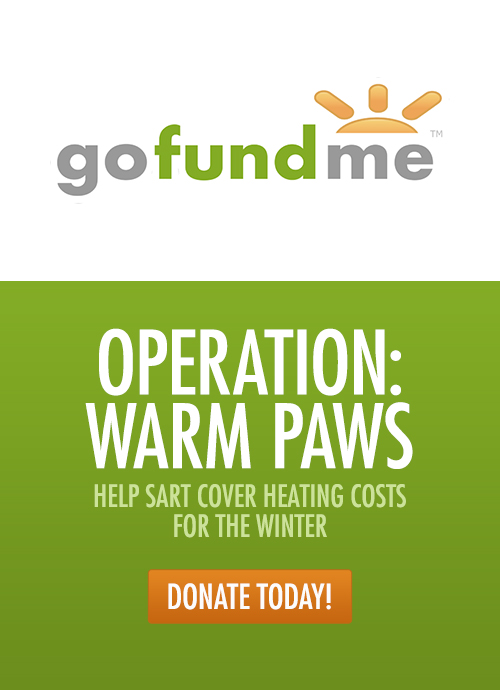 Donate to Operation: Warm Paws